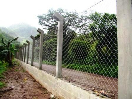 The Fence Along the Road